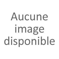 Platine Bouter 1er empire silex